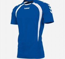 team-t-shirt-royal-white